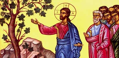 Parable-of-the-Fig-Tree.jpg